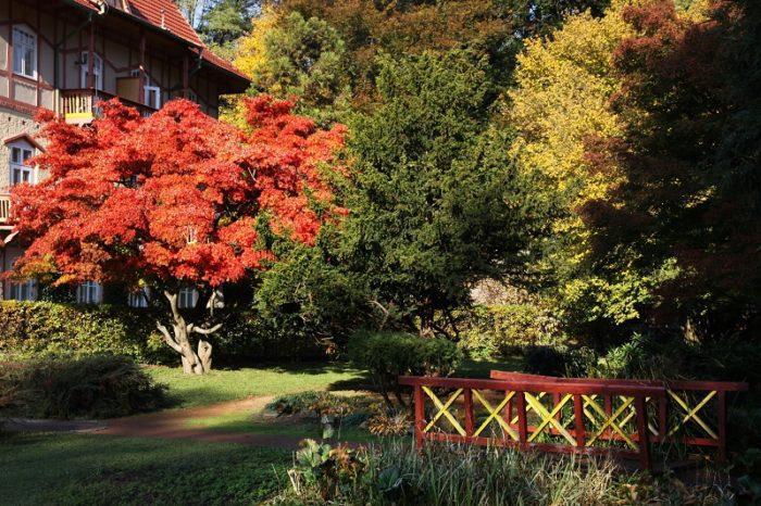 Lávka v Japonské zahradě a budova Jestřabí
